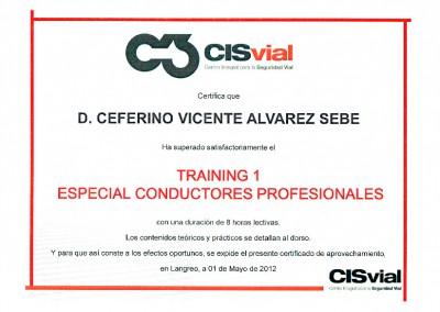 CISvial: entrenamiento de conductores profesionales
